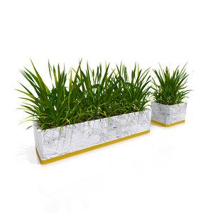 3D hairy plant classy pot model