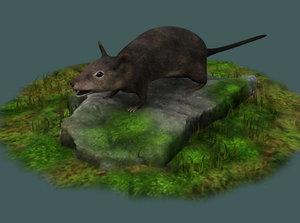 rats house grey voles 3D model