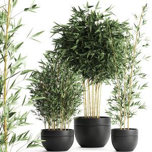 3D bamboo bush interior black