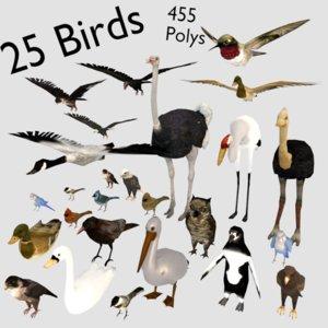 bird ready 3D model