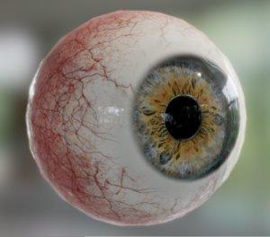 realistic human eye iris 3D model