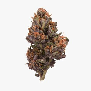 3D cannabis bud forbidden fruit