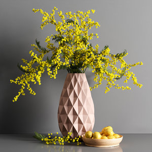 decorative mimosa lemon model