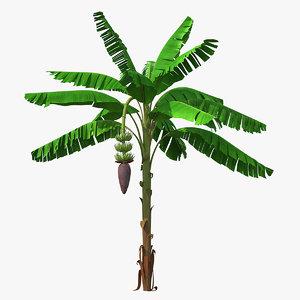 3D blooming banana tree green