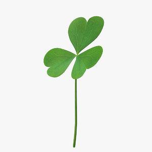 3D leaf clover model