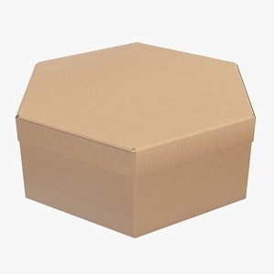packaging corrugated cardboard model