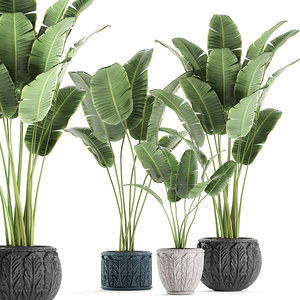 decorative interior classic flowerpot 3D model