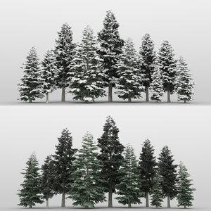 10 cedar trees 3D model