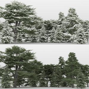 20 cedrus trees 3d max