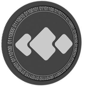 3D usdq black coin model