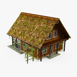abandoned cottage 3D model