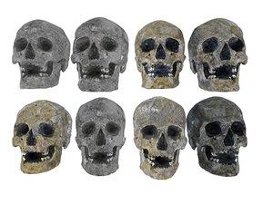 real human skull burnt 3D model