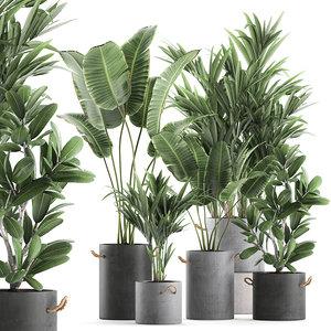 3D plants interior pots model