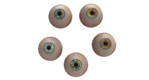 eye ball 3D model