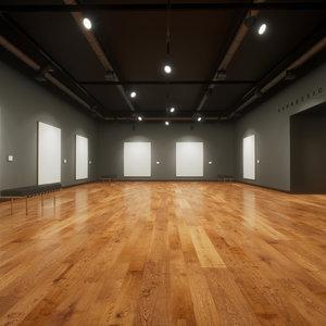 3D artist picture frames