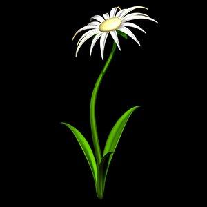 daisy flower flora 3D model