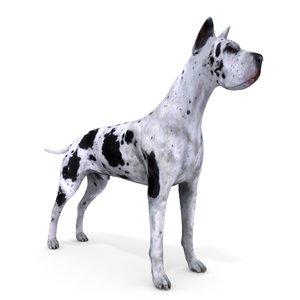 great dane dog anime model