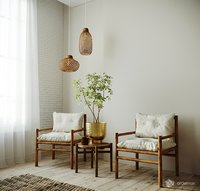 Chairs with decor set