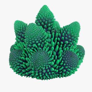 coral 0 s 3D model