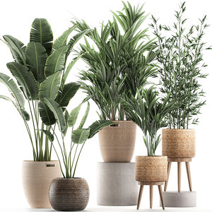 3D model plants interior baskets