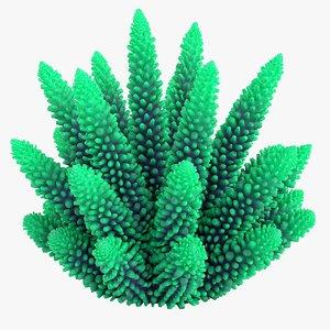 3D coral 1 m
