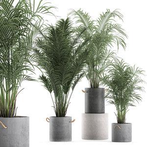 3D decorative palm