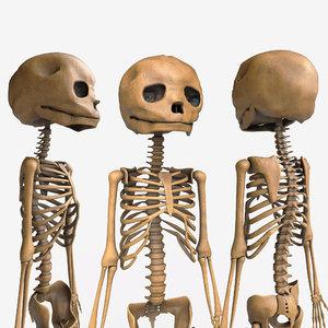 foetus skeleton - pbr 3D model