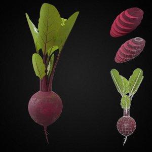 beet root vegetable pbr model