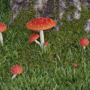 3D amanita muscaria mushroom