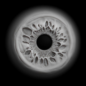 eye iris 3D