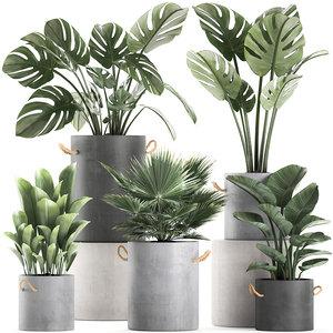 palm interior pots concrete 3D model