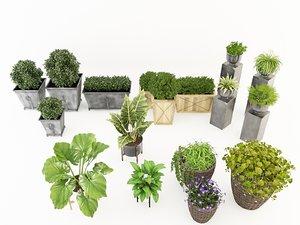 potted plant set model