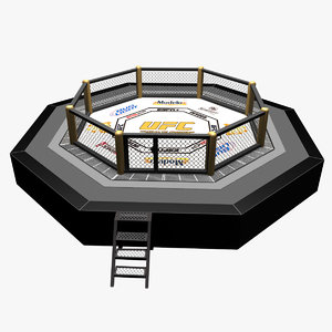 3D model mixed octagon ring