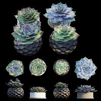 Stone flower set 01