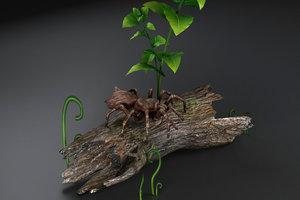 3D spider black widow tarantula
