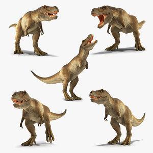 tyrannosaurus rex animal 3D model