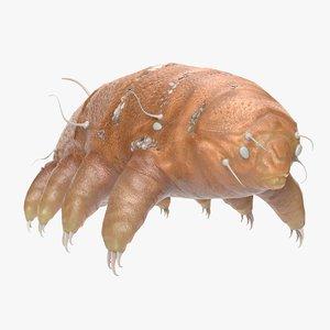 tardigrade pbr 3D model