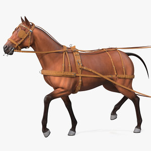3D model horse drawn leather driving
