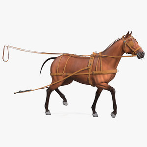 horse drawn leather driving 3D model