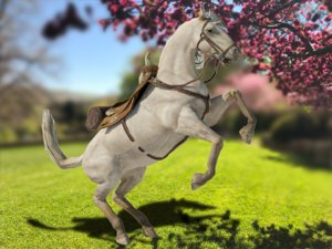 rigged horse animation model