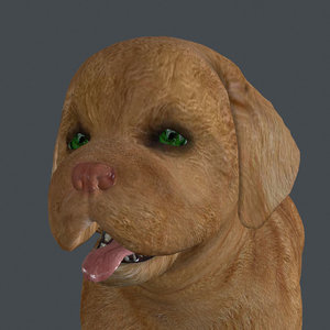 rigged dog standing 3D model