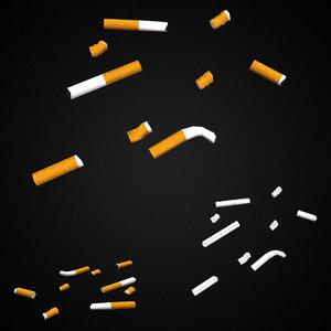 cigarette butts model