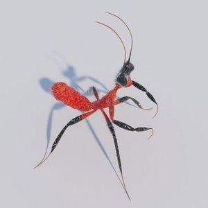3D kung fu mantis