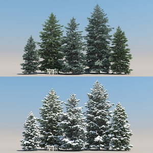 snowy fir trees 3d model