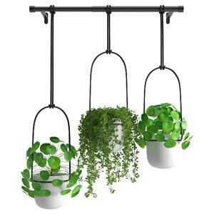 3D houseplant 48
