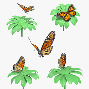3D monarch butterfly collecting flying insect model