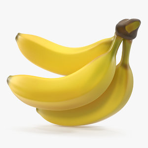 3D branch ripe yellow bananas model