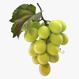 bunch fresh green grapes 3D model