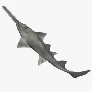 sawfish rigged fish modo 3D model