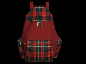 backpack punk model
